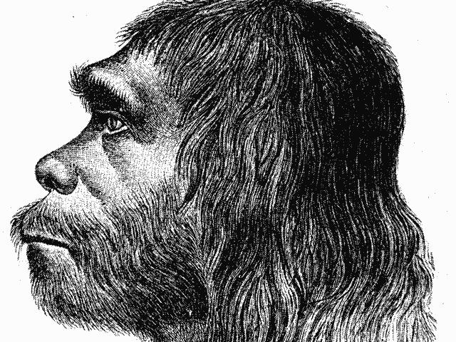 Jurassic Gentrification. Ma i Neanderthal hanno il complesso di Edipo?
