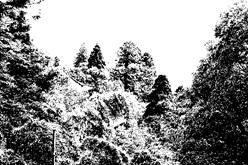 03-monte-kurama-bianconero