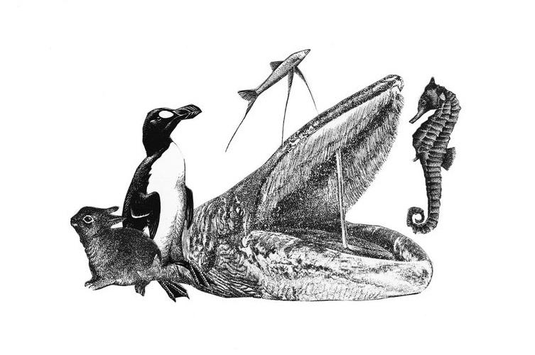 Artico nero e Neghentopia di Meschiari: dall'antropofiction alla fiction